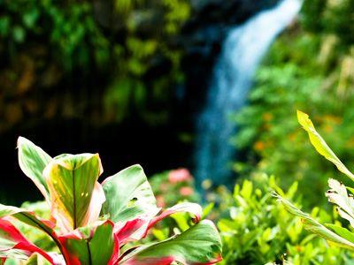 Grenadian waterfall
