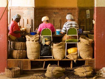 Inside the Nutmeg Station